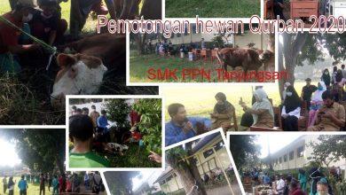 Photo of Pemotongan Hewan Qurban 2020