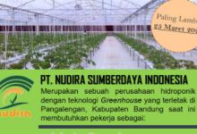 Photo of LOWONGAN PEKERJAAN PT. NUDIRA SUMBERDAYA INDONESIA