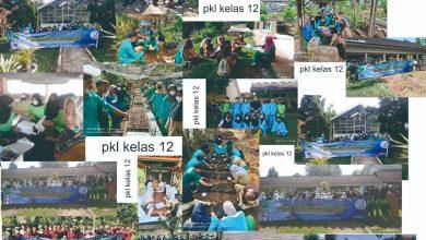 Photo of kegiatan PKL Kelas 12 tahun 2021